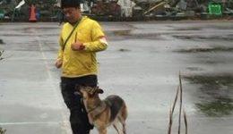 災害救助犬試験 合格!