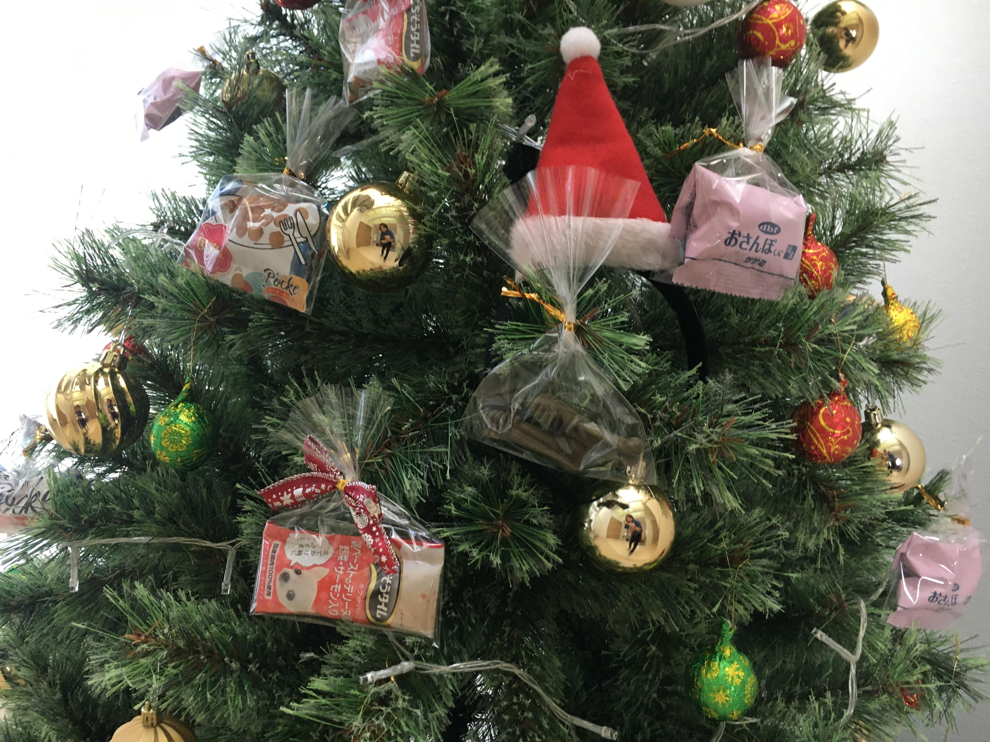 クリスマスパーティー開催します♬